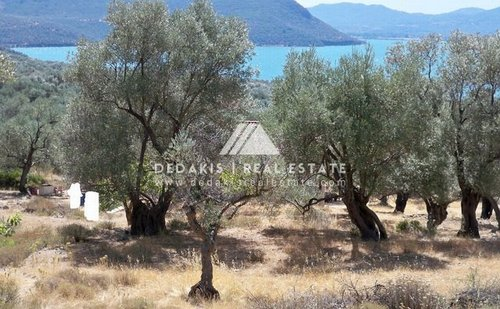 Agricultural land for Sale -